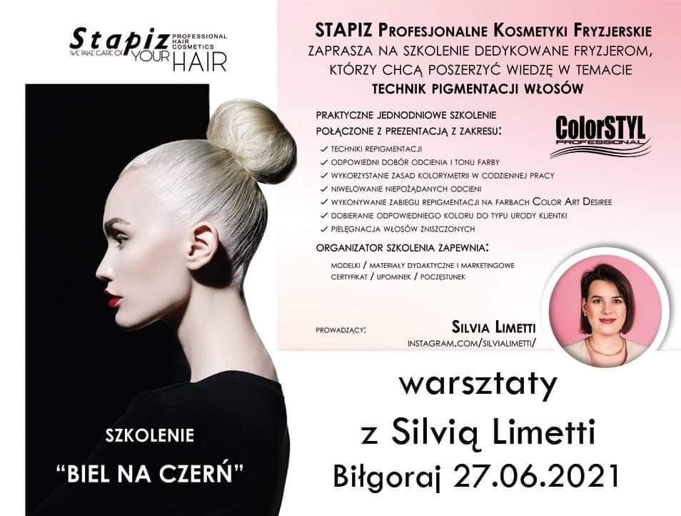 STAPIZ – szkolenie dla fryzjerów z technik pigmentacji włosów